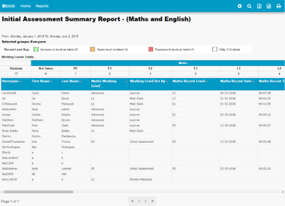 initial assessment report